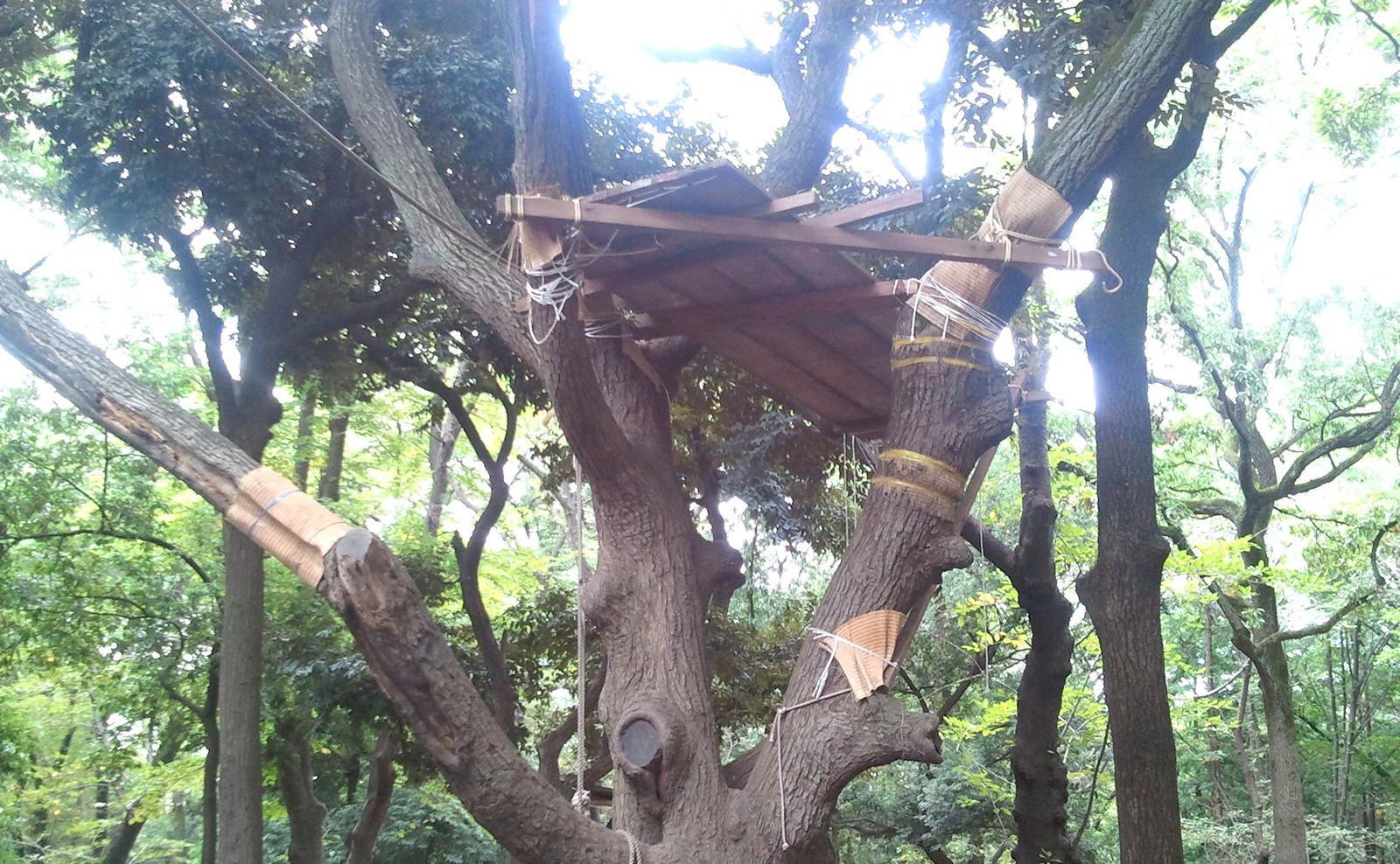 木 パーク 羽根 プレー プレーパークについて